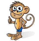 Monkey cartoon isolated on white  background