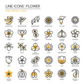 Flower thin line icons set  Pixel perfect icons