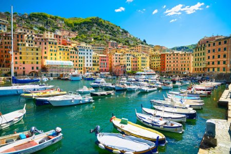 Camogli marina harbor, boats and typical colorful houses. Ligury