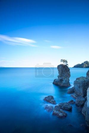 Portofino park. Pine tree rock cliff. Long exposure. Liguria, It