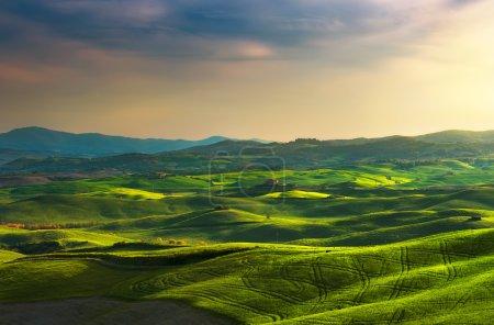 Printemps de Tuscany, collines sur coucher de soleil. Paysage rural. Vert