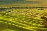 Tuscany spring, rolling hills on misty sunset. Rural landscape.