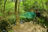 Fotograf, návštěvu krásného rybníka v lese