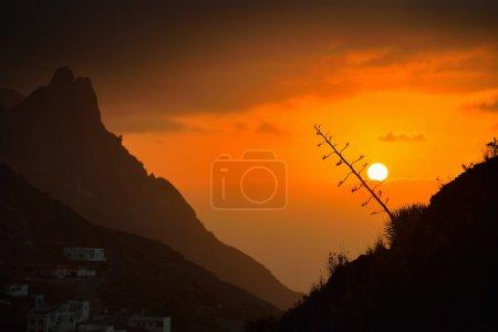 beautiful sunset in Tenerife island, Spain