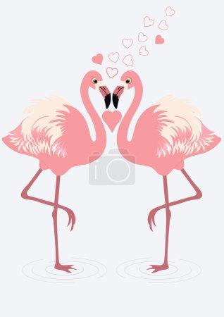 Pair of flamingos
