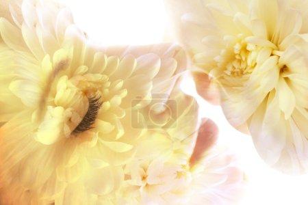 Photo pour Double exposition de couple baisers et fleurs. Gros plan . - image libre de droit