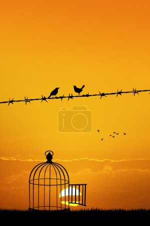 Photo for Illustration of free birds on wire at sunset - Royalty Free Image