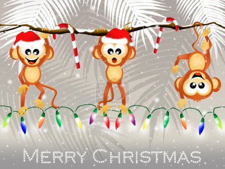 Monkeys at Christmas