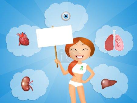 Photo pour Illustration de donneur d'organes - image libre de droit