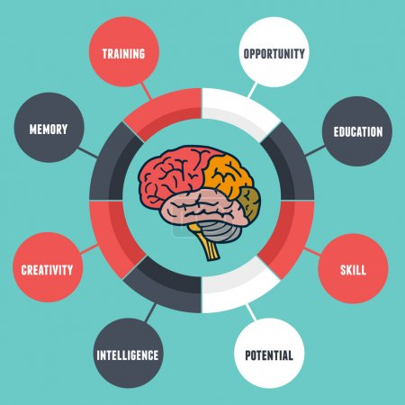 Illustration for Vector infographics of abilities and qualities of the human brain - vector illustration - Royalty Free Image