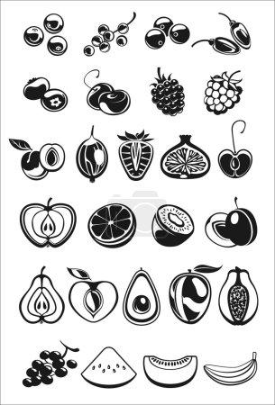 Illustration pour Fruits et petits fruits icônes noir et blanc - image libre de droit