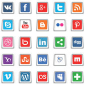 White social media icons Vector