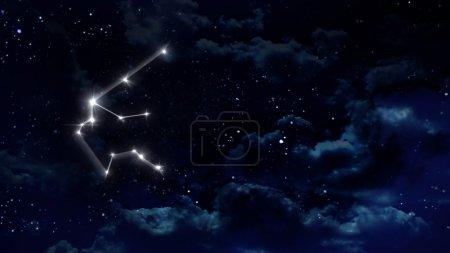 11 Aquarius Horoscope night white