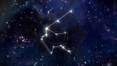 11 Aquarius Horoscope star white