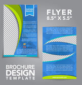 Flyer Brochure Vector Design