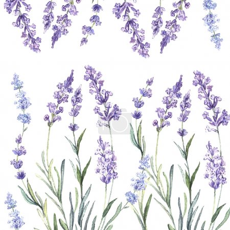 Watercolor  pattern with Lavender