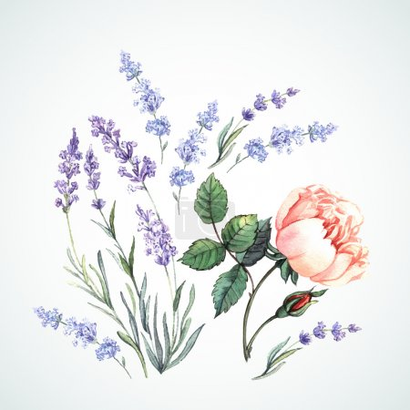 Illustration pour Illustration aquarelle de lavande et rose. Peinture à main. Peut être utilisé sous forme de cartes de vœux, d'invitations et de carte personnalisée. vecteur - image libre de droit