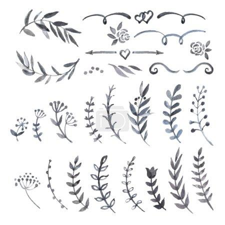 Vintage set with herbs