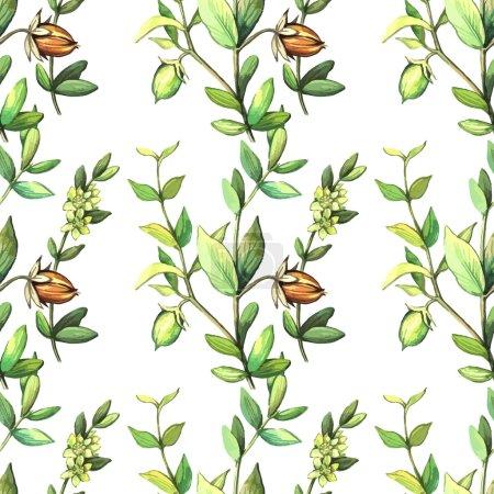 Watercolor pattern with jojoba plants.