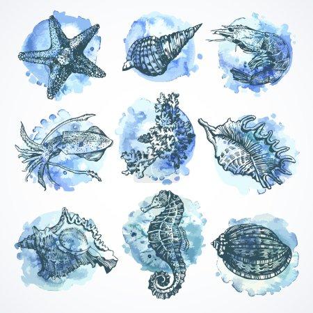 Set of elements on the marine theme