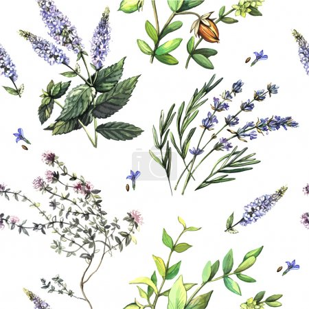 Illustration for Watercolor decorative pattern with medicinal plants. Hand painting. Watercolor. Vector illustration.Seamless pattern for fabric, paper and other printing and web projects. - Royalty Free Image