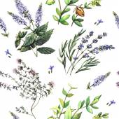 Watercolor decorative pattern with medicinal plants