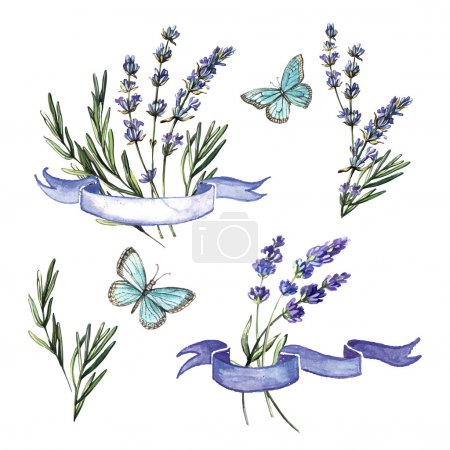 Illustration for Vintage watercolor decorative set with flowers and ribbons - Royalty Free Image