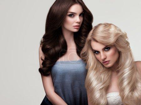 Photo pour Cheveux Bruns et Blonds. Portrait de belles femmes aux cheveux longs. Image de haute qualité . - image libre de droit