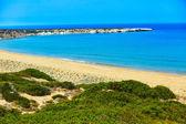 Lara  Bay beach , Cyprus