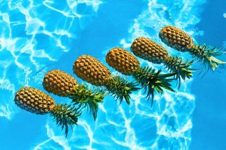 Juicy Fruit. Fresh Organic Pineapples In Pool. Healthy Food, Nut