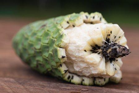 Photo pour Fruit exotique délicieux, mûr et sucré de la monstera deliciosa, appelé ananas - banane (ananas - banane) à Madère. Sûr à manger si le fruit est mûr, les morceaux non mûrs sont toxiques et toxiques - image libre de droit