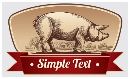 Illustration for Graphic illustration of pig in a frame with ribbon - Royalty Free Image