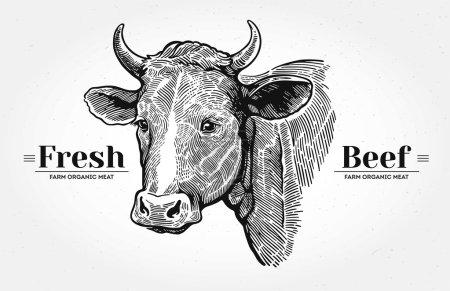 Illustration pour Tête de vache graphique dessinée à la main - image libre de droit