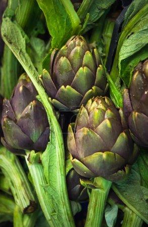 Fresh artichokes at market
