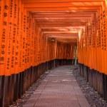 Red Torii of Fushimi Inari Shrine, Kyoto, Japan...