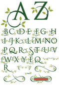 Elegant drop cap vector letters with natural leaf designs Includes alternate letter designs and ornaments