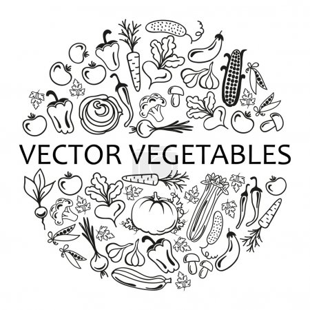 circle of vegetables icons