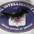 Women eye, close-up, tear, logo of the CIA...