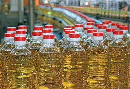Photo pour Production d'huile de tournesol dans une usine, se déplaçant sur la ligne de production - image libre de droit