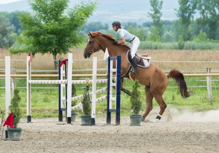 Equestrian Sports, Horse jumping, Show Jumping