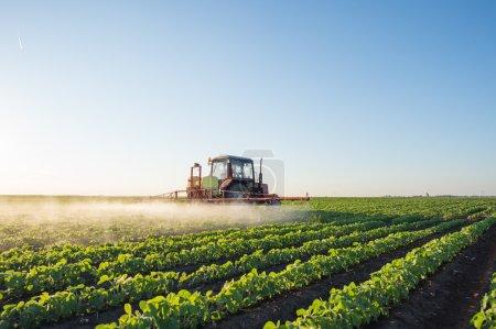 Photo pour Tracteur champ de soja de pulvérisation au printemps - image libre de droit