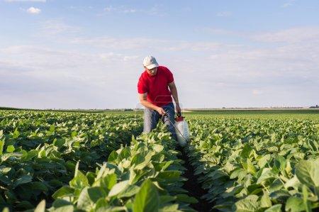 spraying soybean field