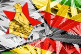 Vlajka Zimbabwe na pozadí konopí. Protidrogová politika. Legalizace marihuany
