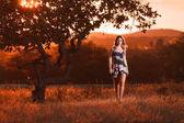 Krásná mladá žena chodí v poli při západu slunce