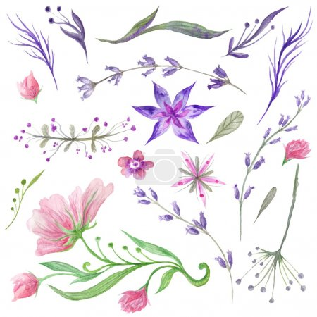 Foto de Bella colección de plantas para la boda, invitación, diseño de tarjetas y elementos florales tiernos eco pintado a mano - Imagen libre de derechos