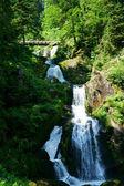 Triberg vodopády v černém lese, Německo-24