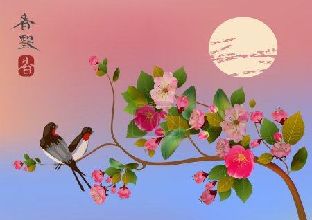 Evening in the garden blooming cherry and birds si...
