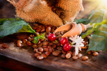 Photo for Coffee beans, flowers and berries on wooden table closeup - Royalty Free Image