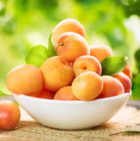 Ripe organic apricots over  background