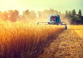 Combine harvester agriculture machine